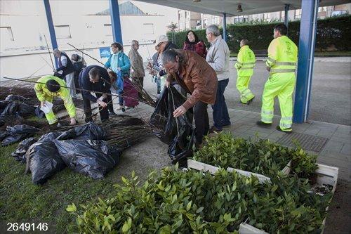Camargo.- Comienza el reparto de los más de 3.200 árboles de la campaña de repoblación fortestal