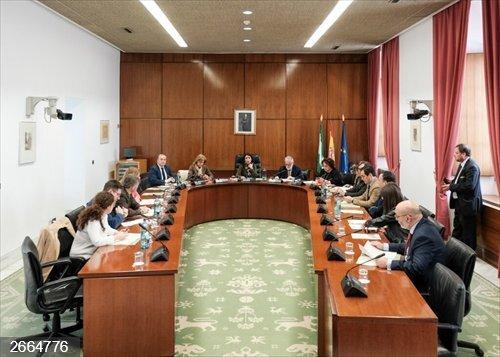 El Parlamento decide una modificación en el régimen de subvenciones a los grupos parlamentarios para fijar anticipo