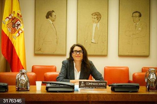 Asociaciones gitanas piden ampliar la renta mínima a menores con cargas familiares y ayudas a la venta ambulante