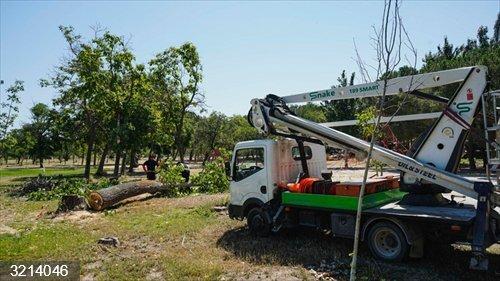 Móstoles.- El Ayuntamiento reabrirá el Parque El Soto solventados los destrozos provocados por el viento