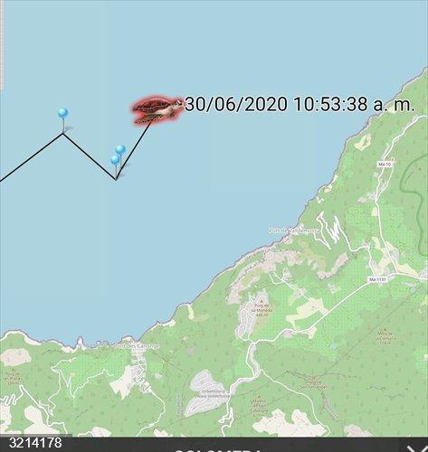 La tortuga Colomera ya recorre la costa de Tramuntana