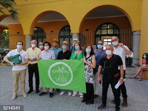 Sevilla.- Diversos colectivos alegan a la calificación ambiental de la ampliación del tranvía en contra de las talas