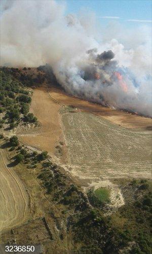 Zaragoza.- Sucesos.- Un incendio quema unas 50 hectáreas de pinar y cultivos en el municipo de Sábada