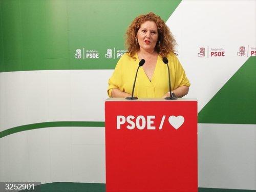 Cádiz.- El PSOE califica de