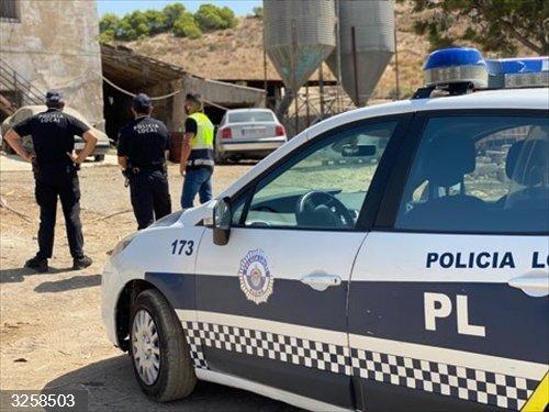 Alicante.- La Policía Local de Elche denuncia a una granja con un matadero clandestino de corderos