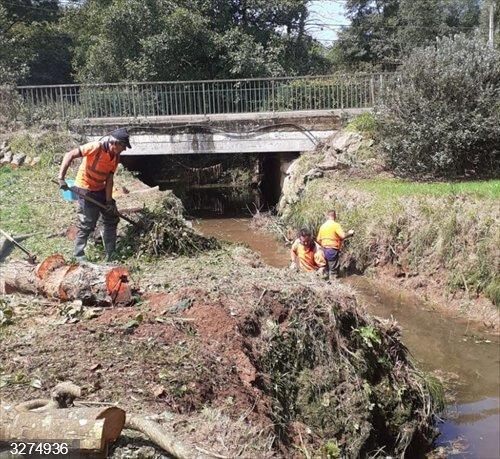 Comillas.- La CHCantábrico realiza acciones de conservación en el arroyo Ruiseñada
