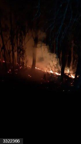 Huelva.- Incendios.- Controlado el incendio forestal declarado en un paraje de Beas