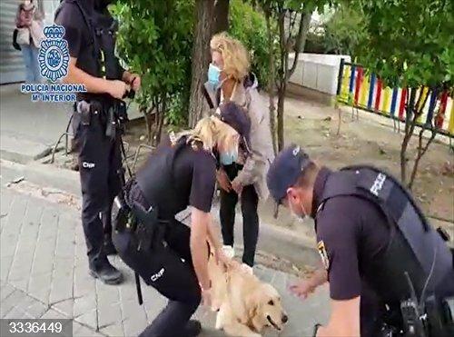 Sucesos.- Detenido un hombre tras robar un coche con un perro dentro en el barrio de Barajas