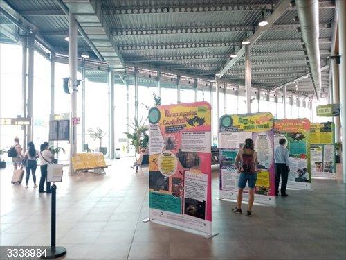 Son Sant Joan acoge una exposición sobre flora y fauna amenazadas de Baleares
